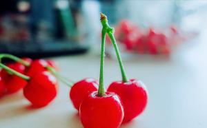 青岛郝家樱桃