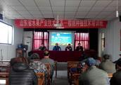 东平县举办樱桃种植技术培训班