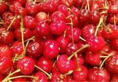 南北樱桃齐上市 早熟品种价格高