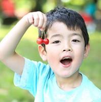 青岛樱桃采摘,世界各地的水果要坐飞机来杭州了